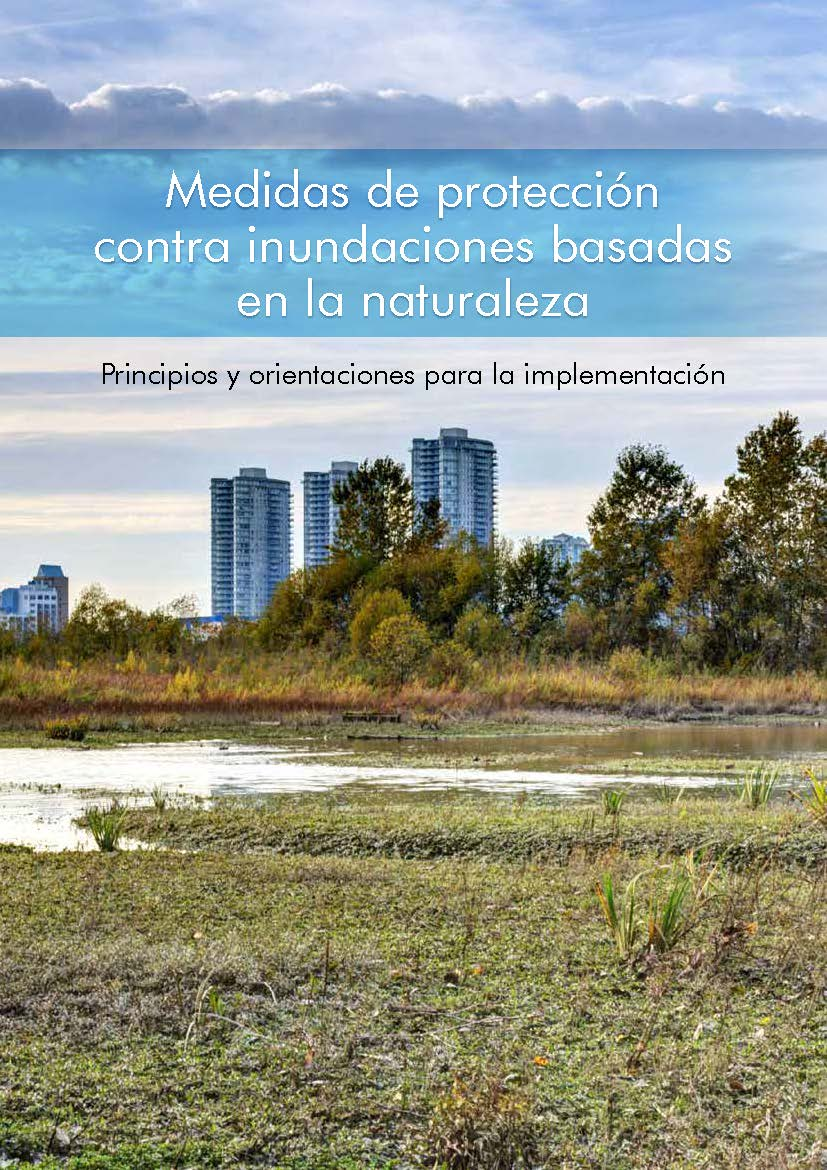 Implementing nature-based flood protection (Spanish)