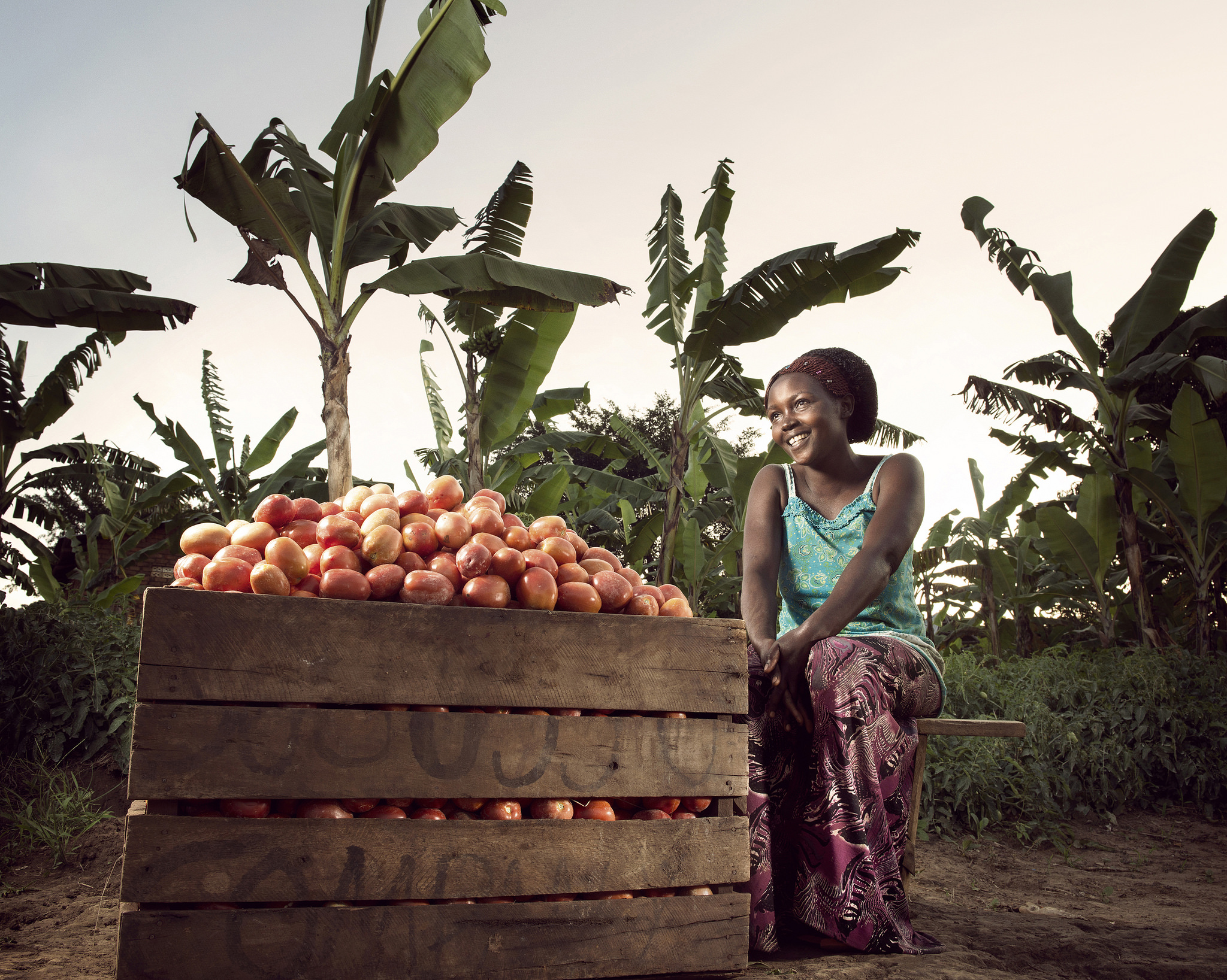 Olivia Nankindu, 27, surveys the fruits of her labor in the waning afternoon sunlight on her farm near Kyotera, Uganda.