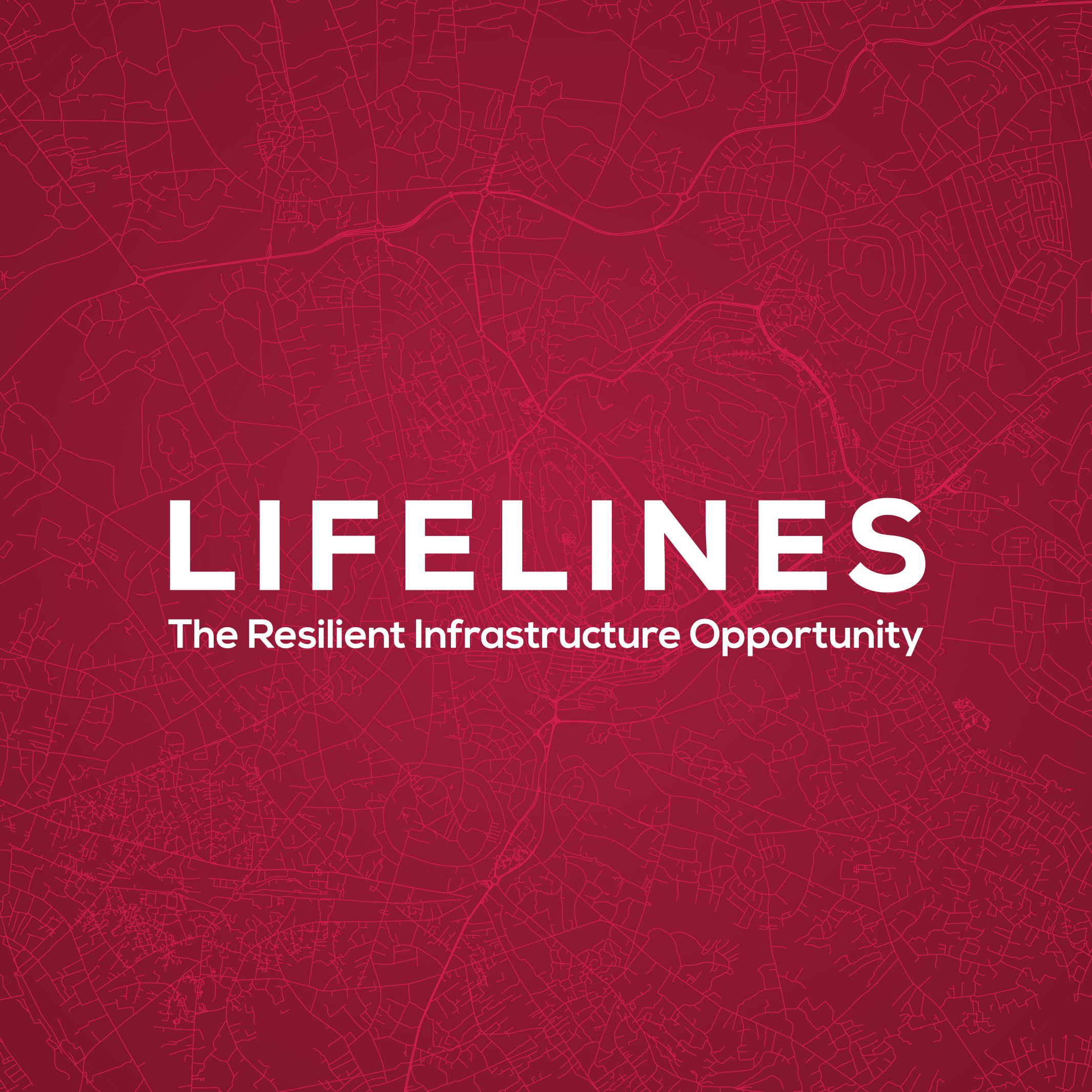Lifelines: The Resilient Infrastructure Opportunity