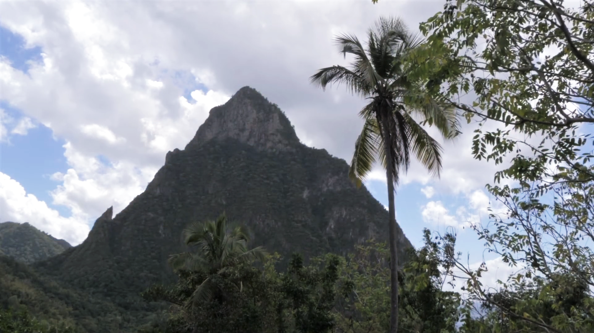 St. Lucia's Jade mountain rises in the background against a cloudy sky. Palm trees can be seen in the foreground.