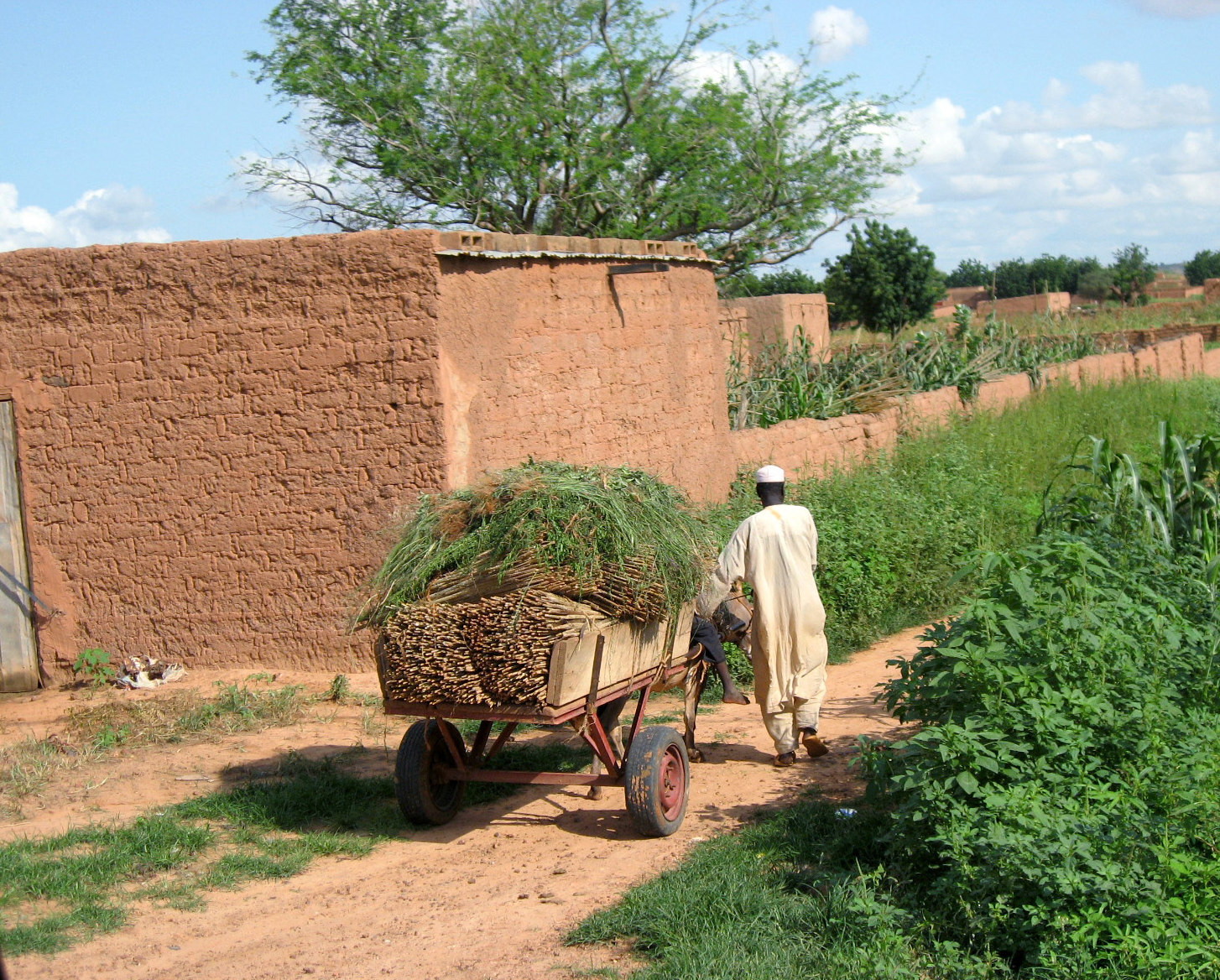 Community Based Disaster Risk Reduction in Niger