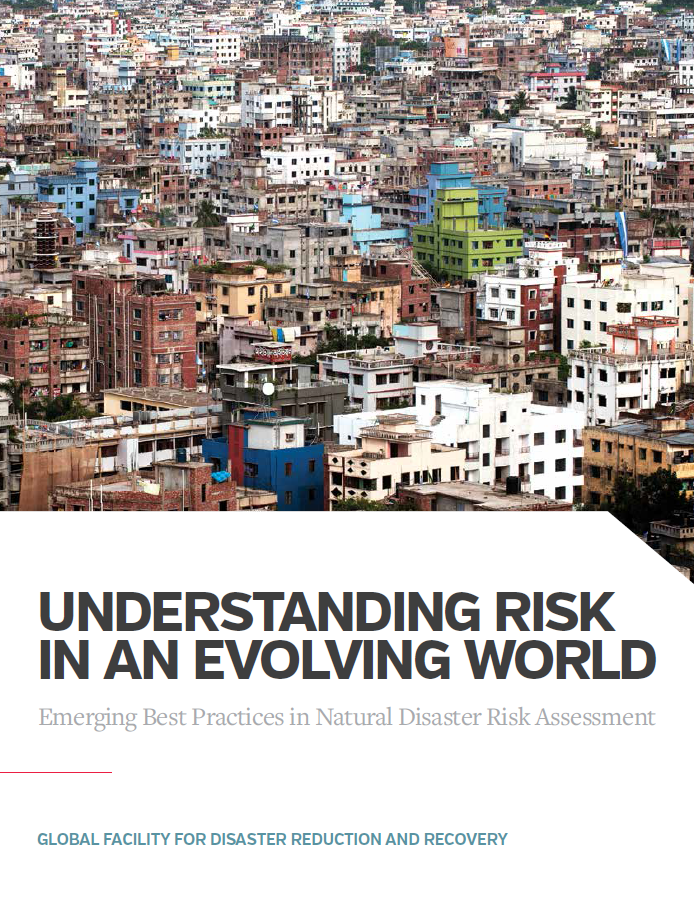 "This is the cover image of ""Understanding Risk in an Evolving World."""