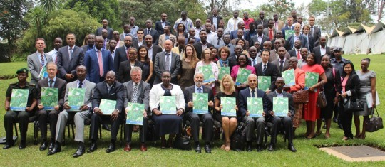 Development of comprehensive disaster risk profiles for enhancing disaster management in Rwanda