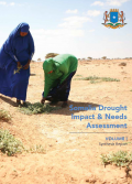 Somalia Drought and Impact Assessment