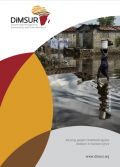 DISASTER RISK MANAGEMENT, SUSTAINABLITY AND URBAN RESILIENCE BROCHURE (DIMSUR)